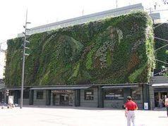 Les murs végétaux, un outil important contre la pollution urbaine   Des 4 coins du monde   Scoop.it