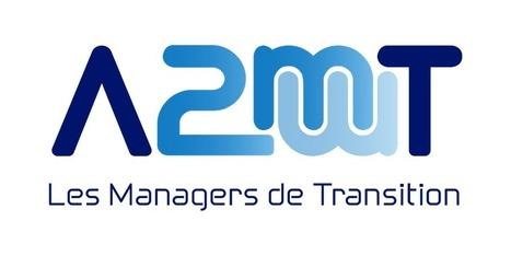 BAROMETRE Manager de Transition 2016 | Management de Transition | Scoop.it
