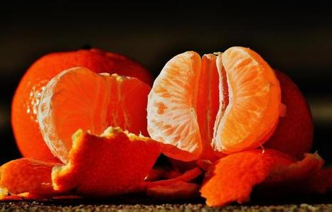 Breast Cancer Prevention May Start In Your Teens, With Lots Of Fruit | Breast cancer survivorship | Scoop.it