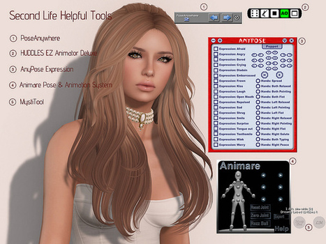 Second Life Helpful Tools Meme - StrawberrySingh.com | Culture and Fun - Second Life - Apps & Utilities | Scoop.it