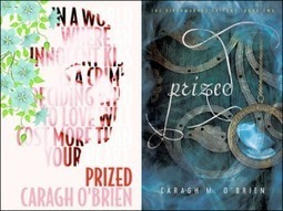 Book Review: Prized by Caragh M. O'Brien « Pretty Books | Dystopian Fiction | Scoop.it