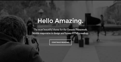 10 Best Genesis Themes from Studiopress | Reviews it | Scoop.it