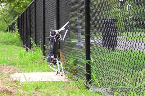Robot Dogs That Much Closer With the Ghost Minitaur - SERIOUS WONDER | Futurewaves | Scoop.it