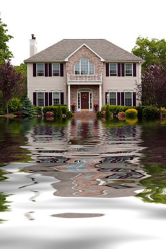 How to Prevent Sump Pump Overflow - Prevent Flooding in Basement | Education | Scoop.it