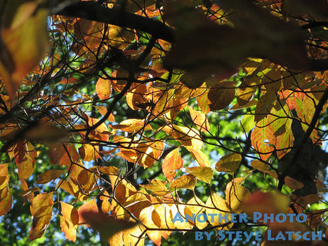 Autumn Arrives in Northwest Ohio | Travel Musings and Photography | Scoop.it