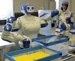 Small-payload Robots Fastest Growing Market 2013 to 2016 | Robotic applications | Scoop.it