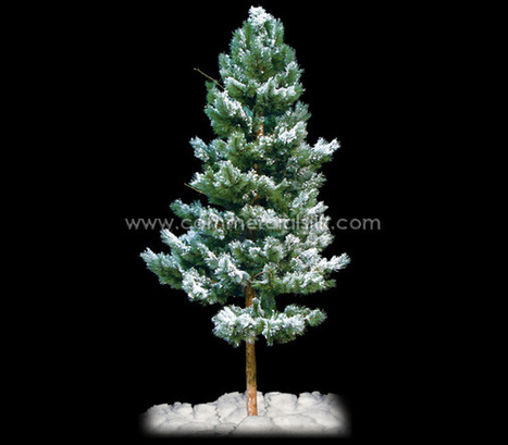 Bring the winters to your homes and offices with artificial pines | Interior Office Plants | Scoop.it
