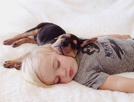 30 People Sleeping With Dogs And Its The Most Adorable Thing You Will See Today | The Wondrous Magazine | Food for Pets | Scoop.it