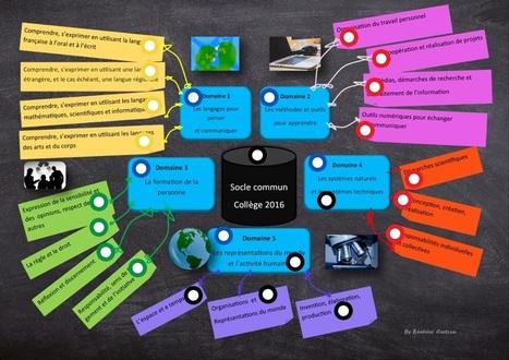 Socle commun de connaissances, de compétences et de culture by Zikmuable | Des ressources pour enseigner au collège | Scoop.it