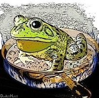 Leadership And The Boiling Frog Experiment | Data and Education Leadership | Scoop.it