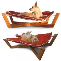 Dog Beds For Large Dogs   urbanpetshop   Scoop.it