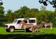Parc animalier safari et activités de plein air - Planète Sauvage | Tourisme en loire atlantique | Scoop.it