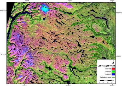 Estimating lichen volume and reindeer winter pasture quality from Landsat imagery | Remote Sensing News | Scoop.it