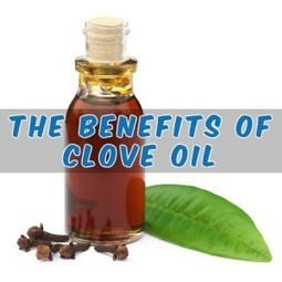 The Benefits of Clove Oil | Natural Health & Healing | Scoop.it