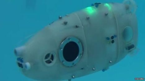Underwater robots aim to mimic nature   Marine Technology   Scoop.it
