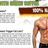 PX800 GREEN COFFEEq