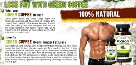 Px800 Green Coffee Extract - Get Free Trial   PX800 GREEN COFFEEq   Scoop.it
