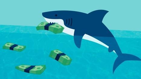 Segunda temporada do Shark Tank tem dois tubarões novos | Empreendedorismo e Inovação | Scoop.it