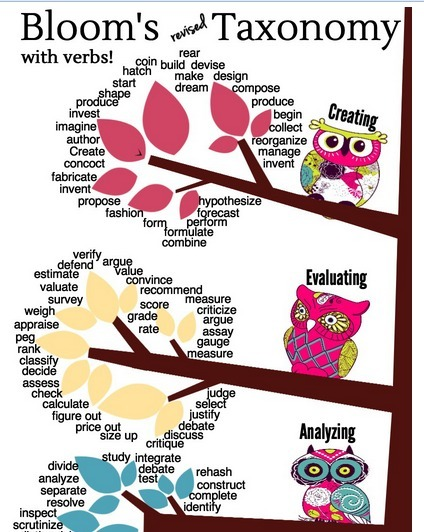Bloom's revised Taxonomy with verbs! (Infographic) | Information Literacy & Inquiry Learning | Scoop.it