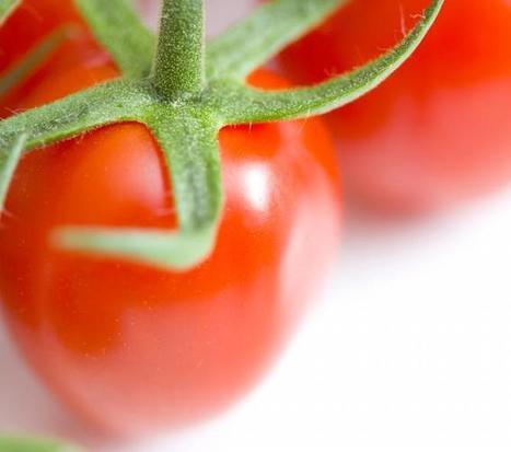 Investigan qué dosis de tomate es la más saludable ya qué genes ... - La Razón   tratamiento para las barices esofagicas   Scoop.it