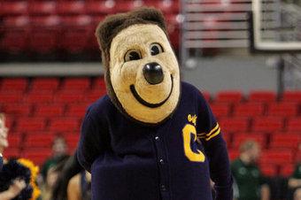 CGB HoF: (6)Oski v. (11)Steve Rivera - California Golden Blogs (blog) | School Mascots News | Scoop.it