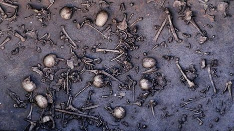 Slaughter at the bridge: uncovering a colossal Bronze Age battle | my universe | Scoop.it
