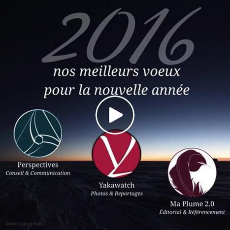 MEILLEURS VOEUX 2016 - VOTRE VISIBILITÉ SUR INTERNET | Web Communication | Scoop.it