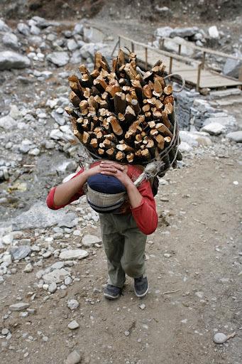 Observatoire des inégalités > Le travail des enfants dans le monde | 694028 | Scoop.it