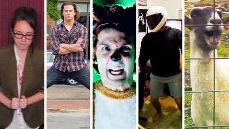 The 12 Best Viral Videos Of 2013 | Real Estate Plus+ Daily News | Scoop.it
