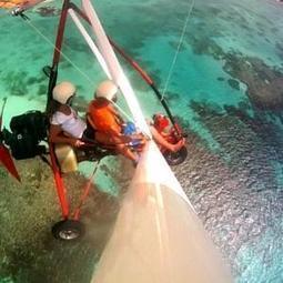 Canal Ploof : La saison 2013-2014 du sport extrême en Guadeloupe ... - meltyXtrem | Projet tutoré: sport extreme | Scoop.it
