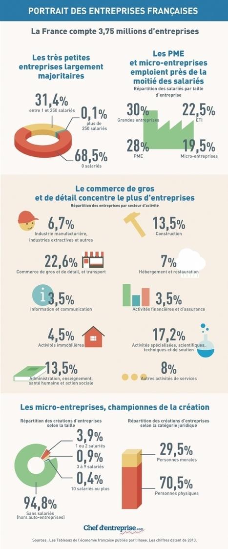 Infographie | Portrait robot des entreprises françaises | Management intergenerationnel | Scoop.it
