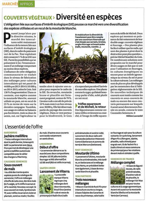 Jachère Mellifère Nova-Flore / Barenbrug - Agrodistribution - Mai 2016 | Revue de presse Nova-Flore | Scoop.it