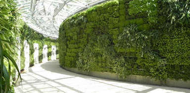 Living Wall, Green Walls, Vertical Garden, Plant Wall, Living Walls - Ambius   Architecture and Design   Scoop.it