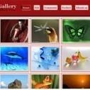 30 Best Free Blogger Gallery Templates | Blogging | Scoop.it
