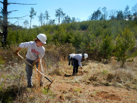 Trail Building on SAHC's Community Farm | North Carolina Agriculture | Scoop.it