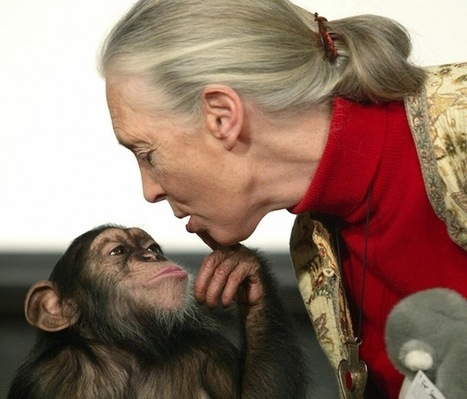 Jane Goodall explains empathy and why kids need pets | EMPATICUS | Scoop.it