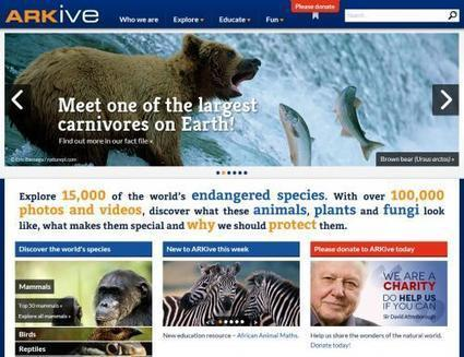 Vivid Digital Library of the Natural World | Literacy Using Web 2.0 | Scoop.it