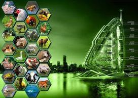 NATURA - MEDIO AMBIENTAL ©: Análisis integral del Medio Ambiente y el Derecho Ambiental | Derecho ambiental | Scoop.it
