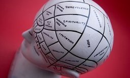 Four neuromyths that are still prevalent in schools – debunked | Evidence-Based Education | Scoop.it