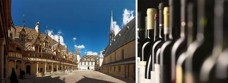 Claude Lelouch et Eddy Mitchell parrainent les Hospices de Beaune | Le vin quotidien | Scoop.it