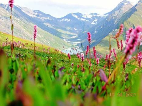 Summer Uttaranchal Holiday packages from Delh | Agra Holiday packages | Scoop.it