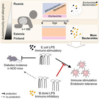 Variation in Microbiome LPS Immunogenicity Contributes to Autoimmunity in Humans | Bioinformatics and holobiota | Scoop.it