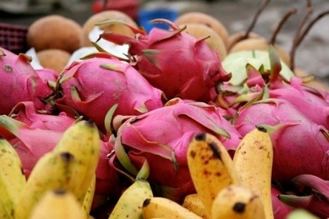 7 Unknown Benefits of Dragon Fruits for Healthy Skin & Hair | Google | Scoop.it
