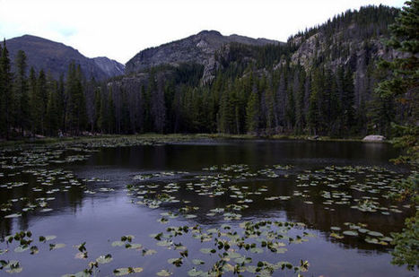 Why The Best Place To Survive The Zombie Apocalypse Is The Rockies | Zombie Mania | Scoop.it