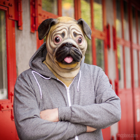 Pug Mask, A Latex Mask So You Can Look Like a Dog | rubber fetish news | Scoop.it