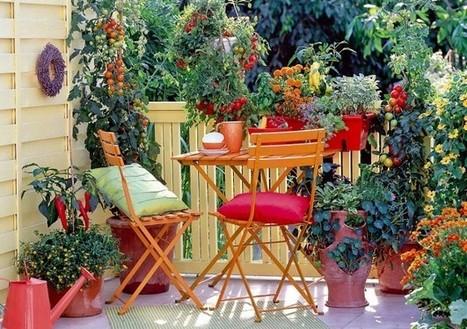 Orto Giardino Frutteto Piante Innovative E Antiche