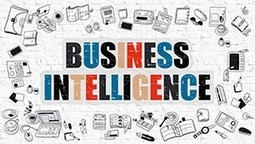 Business Acumen vs. Business Intelligence | Strategy and Competitive Intelligence by Bonnie Hohhof | Scoop.it