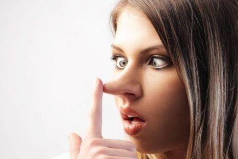 Pourquoi tant de mensonges au bureau? | MONSTER.FR WITH PHILIPPE TREBAUL | Scoop.it