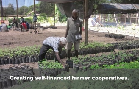 Smallholder Farmers: The New Global Food Frontier | Innovative Agriculture - Agriculture 3.0 | Scoop.it