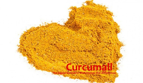 CHOLESTEROL LEVELS and CURCUMIN | Longevity science | Scoop.it